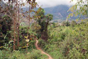 randonnee montagne Nong Kiaw