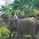 sylvie voyage laos hopital elephant