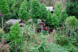 trek village khmu laos
