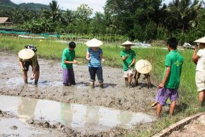 laos-luang-prabang-culture-riz